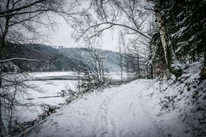 Uferweg am See (Fjord) entlang