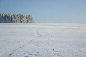 Blick über weites, verschneites Land