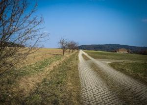 Gepflasterter Flurweg