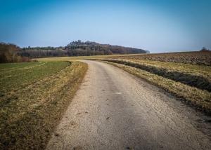 Geteerter Feldweg in Freifläche