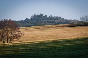 Blick zur Burg Stauf