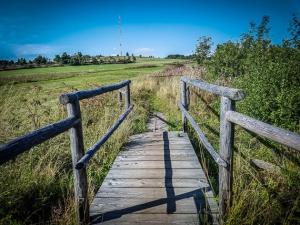Holzbrücke inmitten von Wiesen
