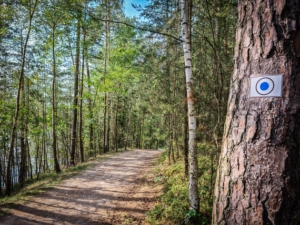 Weg am Feisnitzspeicher entlang