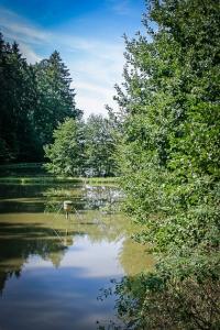 Blick auf einen langen Teich