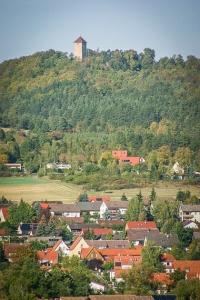 Blick auf Ostheim mit Burg