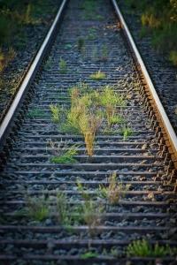 Über alte Bahngleise
