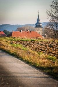 Hohenmirsberg im Blickfeld