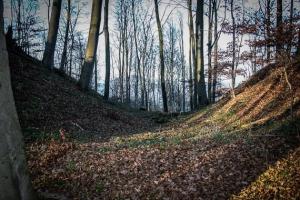 Wandern auf den Stiefenberg