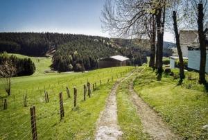 Unterhalb von Enchenreuth