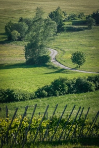 Der Weg hinab ins Tal