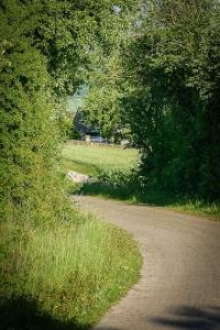 Breiter Weg durch Hecken
