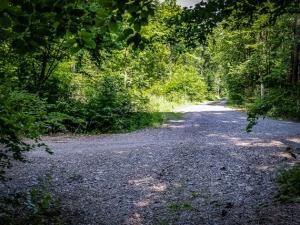 Geschotterte Wegkreuzung im Wald