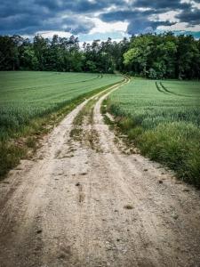 Breiter Feldweg