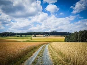 Weg durch weite Felder