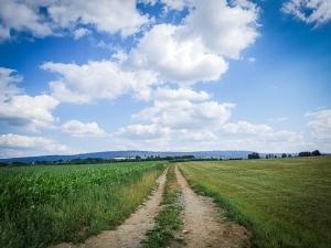 Breiter Feldweg Richtung Weißdorf