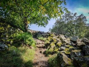 Aufstieg auf die Basaltkuppe