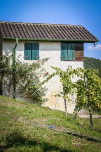 Schönes altes Weinberg-Häuschen