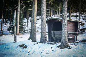 Pappenheimer Hütte bei Ernstthal
