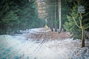 Mittlerer naturbelassener Fahrweg