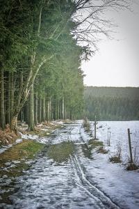 Wieder an einem Waldrand entlang