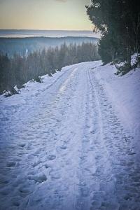 Am Waldrand mit weiten Ausblicken entlang