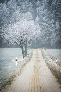 Gerader gepflasterter Feldweg