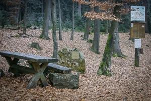 Rotmainquelle mit Holzbach-Sitzgruppen