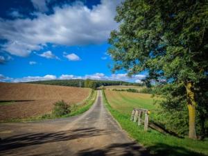 Geteerter Feldweg nach rechts oben