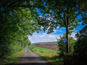 An Hecke entlang aus dem Ort