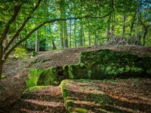 Felsen Mauern und Treppen im Wald