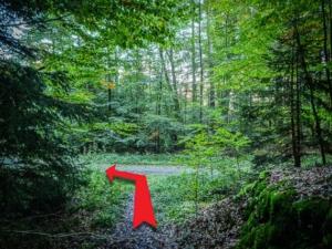 Unten auf Forstweg nach links abbiegen