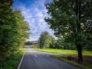 Der Landstraße an einem langen Waldrand entlang folgen
