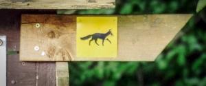 Wegweiser Fuchs Symbol