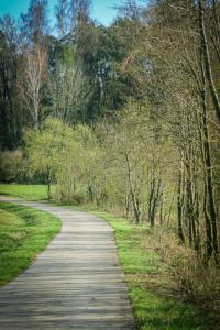 Weg an einem geraden Bach entlang