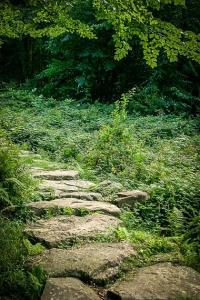 Findlingweg – auf Steinen bergauf