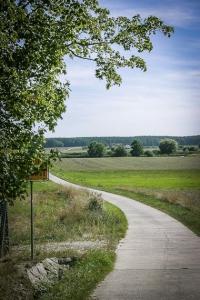 Weg Richtung Mohrhof