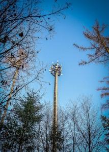 Mobilfunkmast im Wald