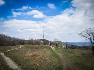 Blick über Höhenrücken zum Turm