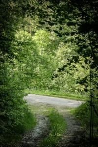 Weg mündet auf Schotterweg