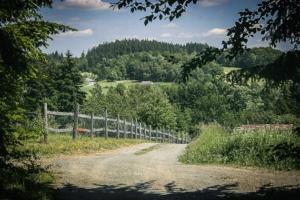Weg Richtung Wolfersgrün