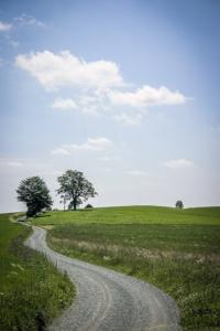 Richtungs Weilesberg über freie Hochflläche