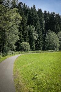Geteerter Rad- und Fußgängerweg