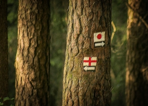 Dem Weg mit rotem Kreuz folgen