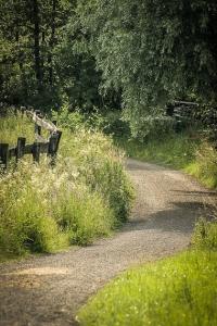Weg außen an Hecke entlang