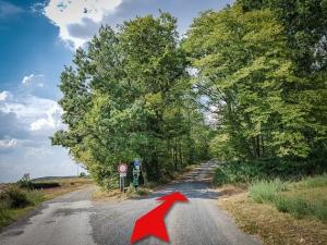 Nach rechts in den Wald