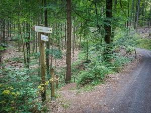 Wegweiser zum Hirschbrunnen