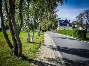 Straße von Bäumen flankiert