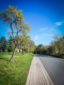 Weg vom Parkplatz hinein nach Großenbuch