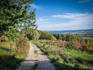 Breiter Weg bergab
