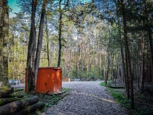 Baustelle im Wald